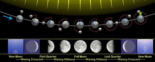 lunar phase