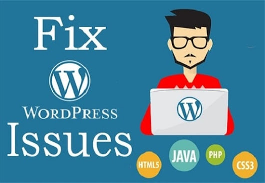 I will fix Wordpress Errors, Issues or Customize Theme