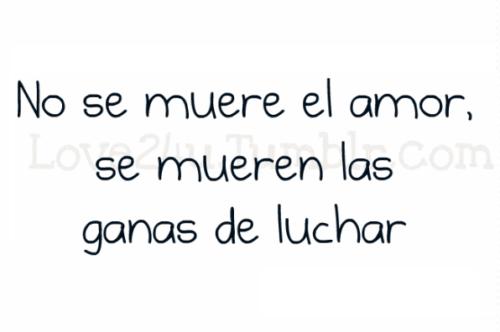 Frases De Amor 4k