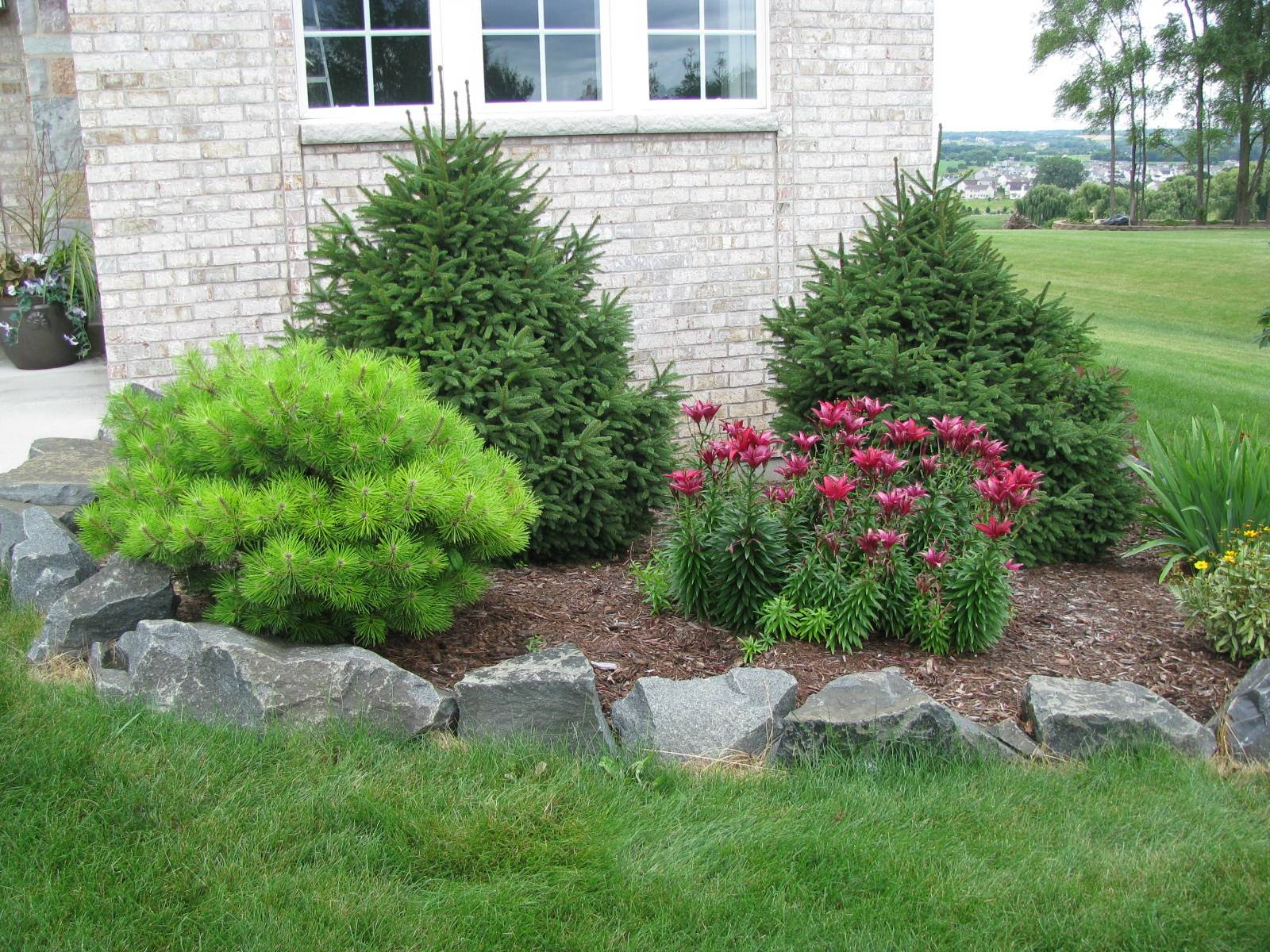 Landscaping Landscaping Ideas For Front Yardqld