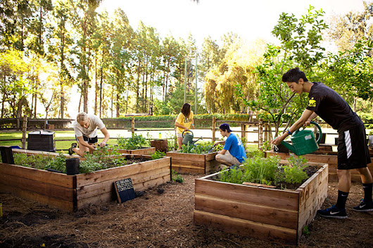 13 UC projects win statewide sustainability awards