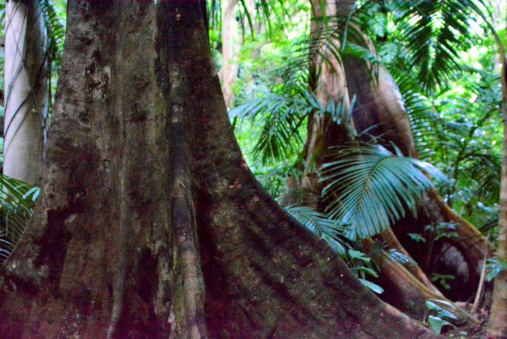 Lagen Island, Palawan