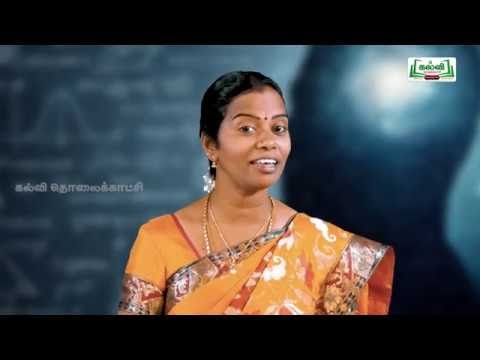 NEET JEE Maths Complex Numbers Kalvi TV