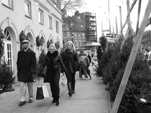 Christmas Trees, Sixth Avenue, NYC