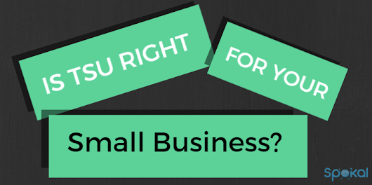 Is Tsu Right For Your Small Business?