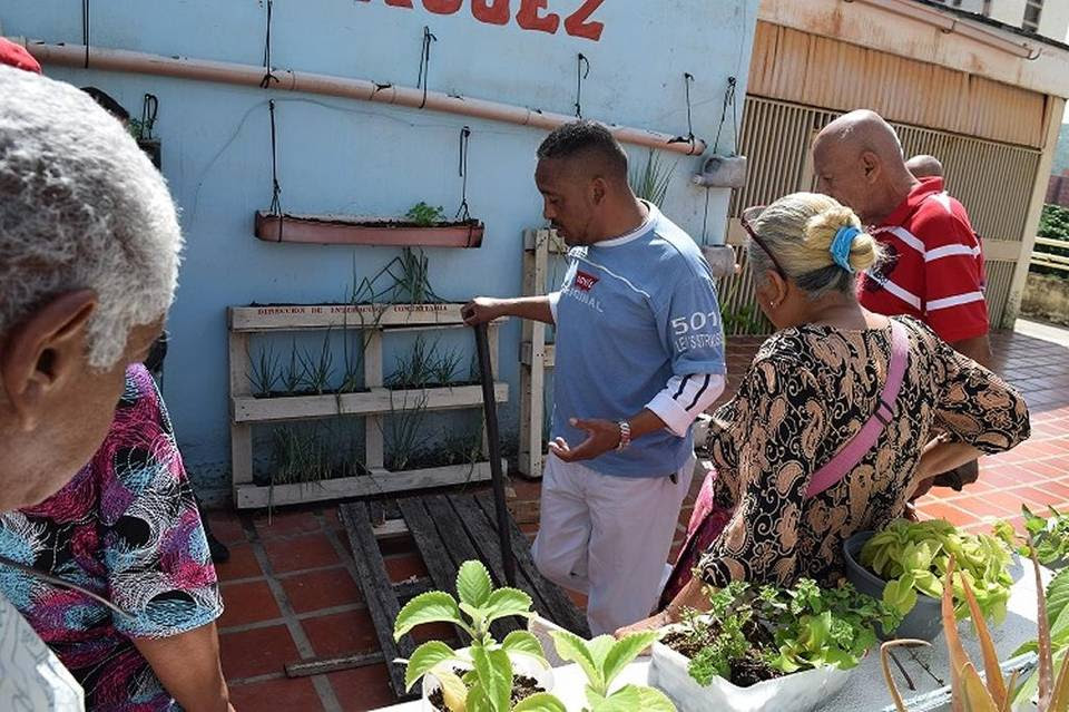 Senior citizens in Caracas, Venezuela, get a lesson on urban agriculture. As the nation finds itself in a food crisis, the government is urging city-dwellers to plant fruits and vegetables.