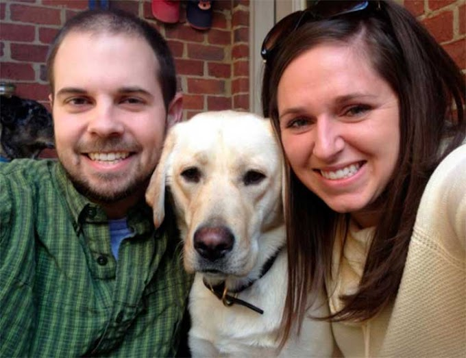 Preparan una inolvidable cena de Navidad para su familia canina… Pero eso no es todo