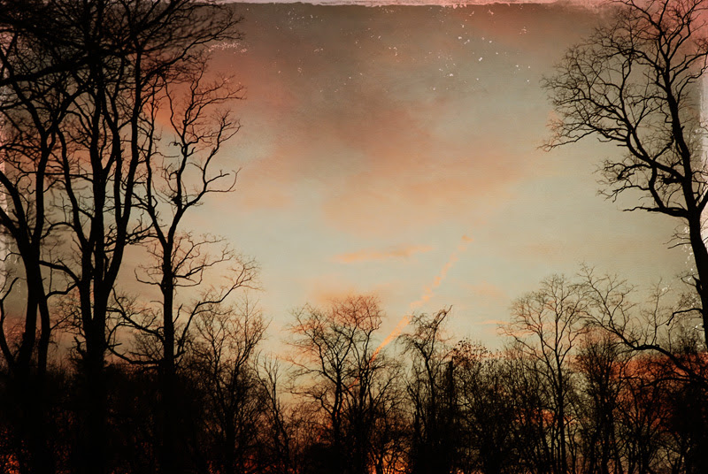 Pink skies at night