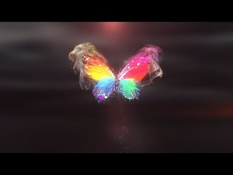 Colorful Butterfly Logo Reveal | free after effect - Okay Bhragav