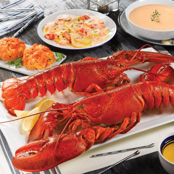 Lobsterpalooza! Live Maine Lobster Dinner Gift Package