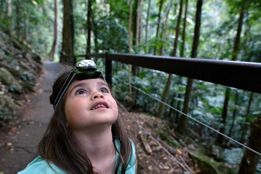 Why New Zealand Is The Ultimate Location For Travelling With Kids