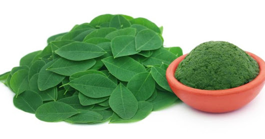 Moringa Leaves & Weight Loss