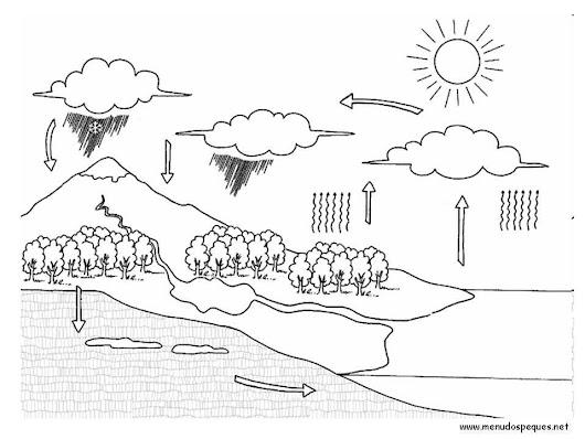 Dibujos para colorear sobre la tierra y el medio ambiente. Ciclo del ...