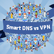 Smart DNS vs. VPN - What's the Difference? | CactusVPN