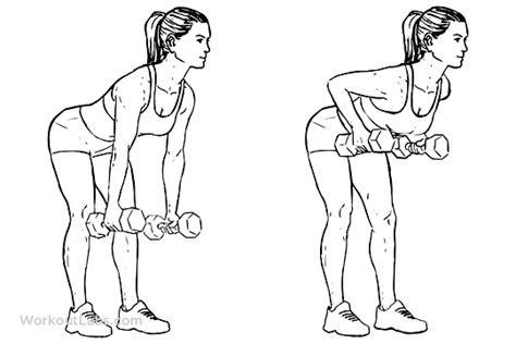 exercises     reduce arm fats healthloco