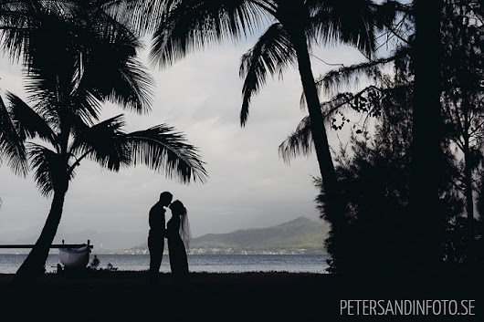 Cynthia & Henrik - A perfect day in paradise | Hawaiian destination wedding