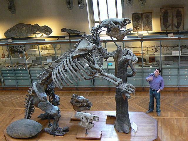 Esqueleto completo de un 'Megatherium americanum',