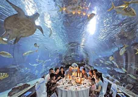 Tianjin:  family dinner under the sea, in the world's largest Ocean Park