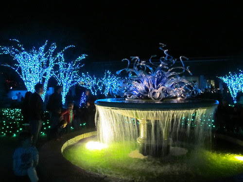 Fountain & Lights