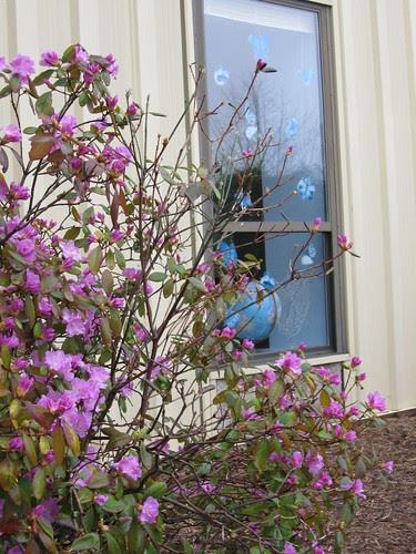 Sunday School Window