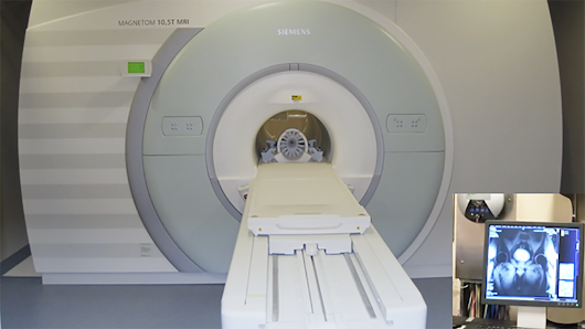 U Scientists Scan World's First 10.5-Tesla Human MRI Image