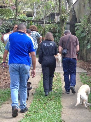 Membros da BEA, Aeronáutica e Polícia Civil visitam uma das casas onde aeronave caiu (Foto: Kleber Tomaz / G1)