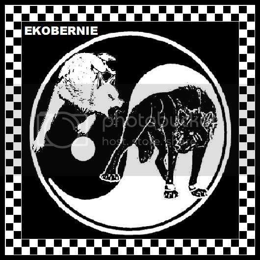 Black And White Wolf Fighting On Yin Yang Black And White Tattoo