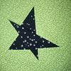 Caroline's star #1
