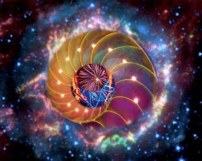 http://elishean.l.e.f.unblog.fr/files/2012/12/sue2.jpeg