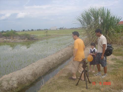 I examine the paddy fields