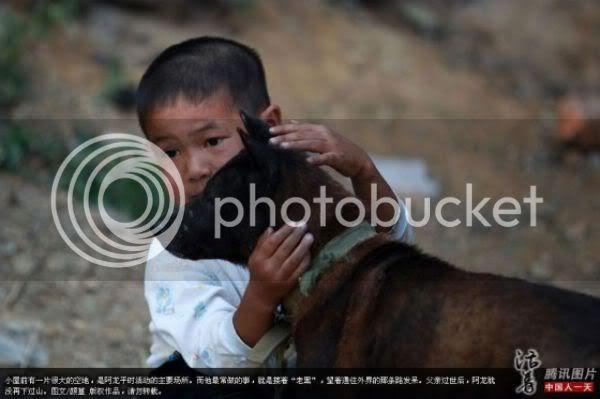 Hasil gambar untuk ah long with dog