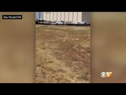 (Video) Lagi Kejadian Tembakan Rambang Di USA, 5 Terbunuh Dan Puluhan Tercedera