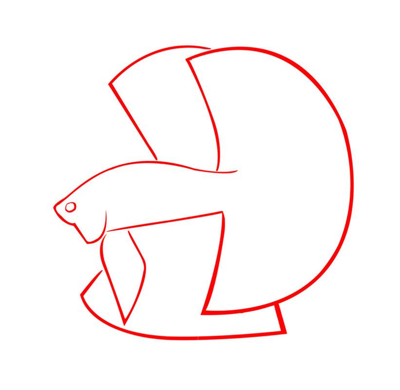 Download 550+ Gambar Ikan Cupang Hitam Putih Terbaru