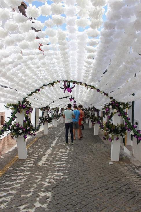 Festival das Flores de Campo em Portugal!