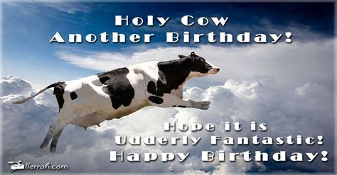Holy Cow Another Birthday!
