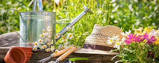 Skincare products for keen gardeners | Melt Blog