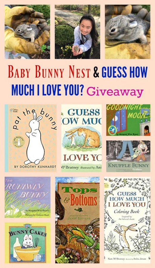 Baby Bunny Nest & GUESS HOW MUCH I LOVE YOU? Giveaway