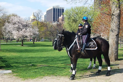 Police at Boston