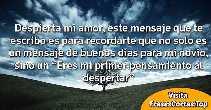Frases Y Mensajes De Buenos Dias Mi Amor Para Enamorar Novio A