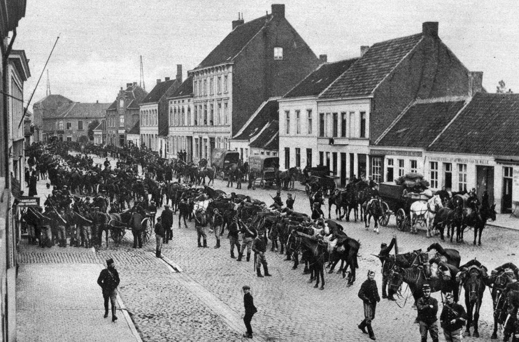 Os animais também lutaram na Primeira Guerra Mundial 28