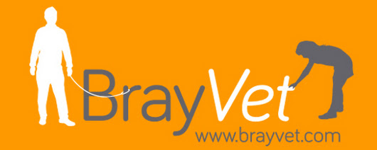 BrayVet's Autumn Newsletter about pets is here