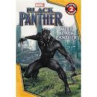 MARVEL's Black Panther: Meet Black Panther [Book]