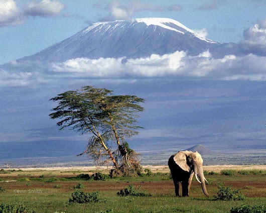 9 Days Tarangire, Lake Natron, Serengeti, Ngorongoro Crater, Lake Eyasi, Manyara & Arusha National Park