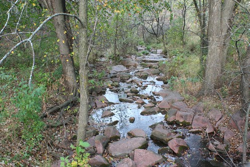 Creek in Palisade State Park
