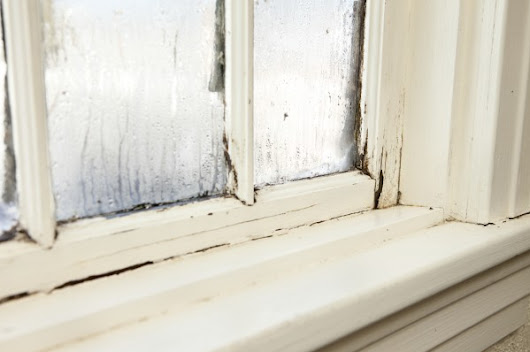 Preventing Mold & Mildew in New Home Construction