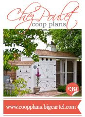 Why not add a beautiful chicken coop like this one so that you can have your own tasty eggs each morning??  Or get some cute Silkie Chickens to make your pets!!!  I thought it was a great design and work well done!!