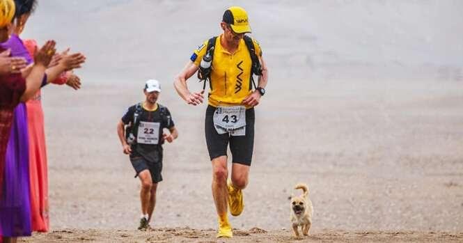 Cão de rua acompanha atleta em longa maratona