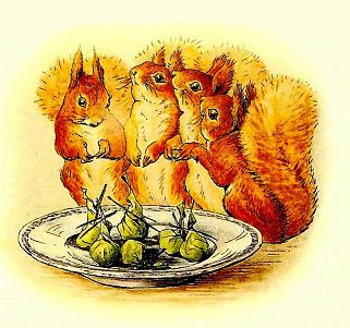 Beatrix Potter Squirrel Nutkin