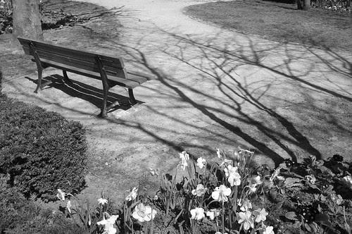 Le printemps tente une percée ! by Le chaland qui passe
