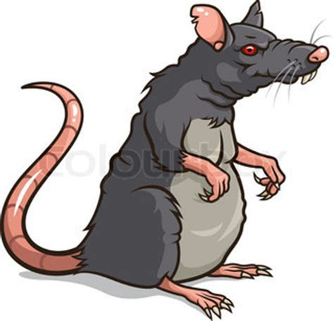 Evil Rat Cartoon